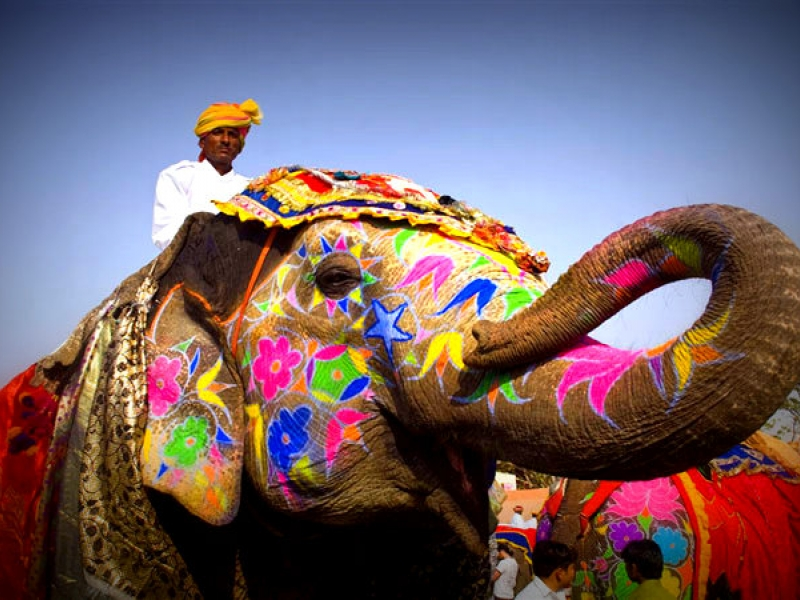elephant fair in rajasthan
