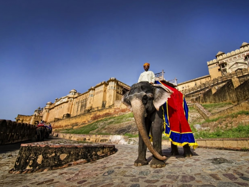 Forts & Palaces in Rajasthan tour