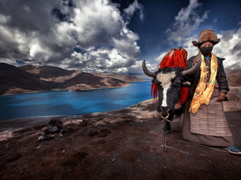 wildlife-activities-in-tibet