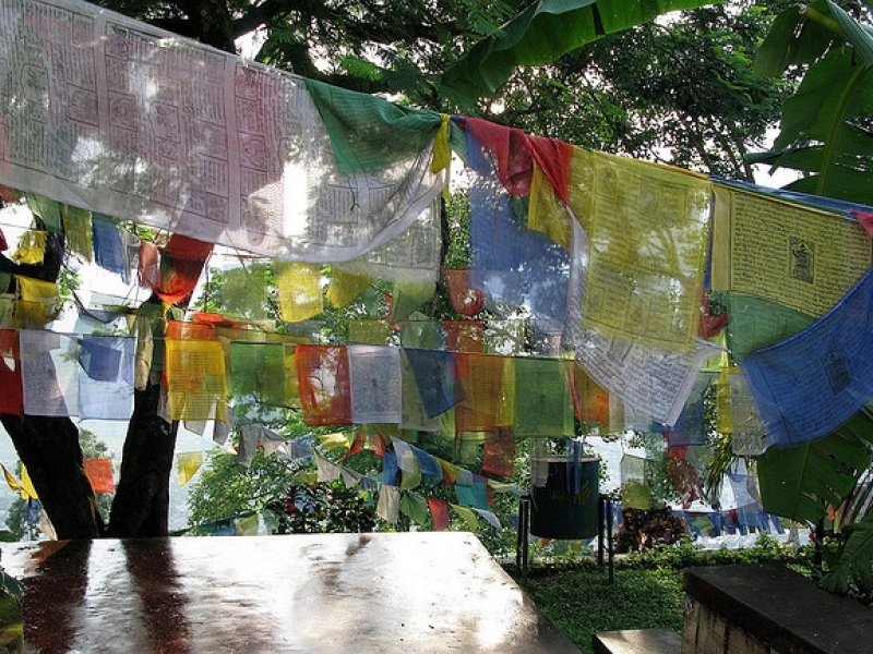 Central Bhutan Tours and Travel